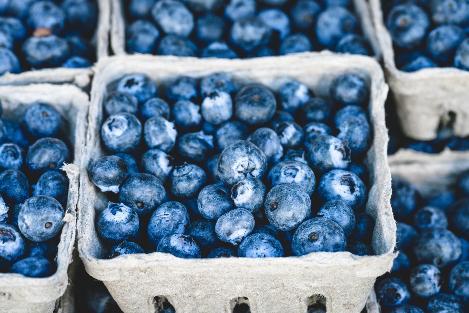 Growing blueberries in the garden, buying blueberries, blueberry nutrition and enjoying blueberries