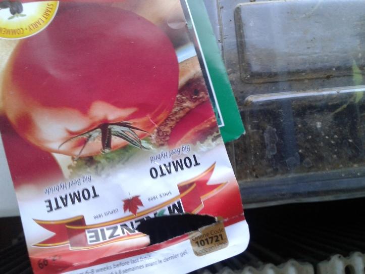 tomato seed packs